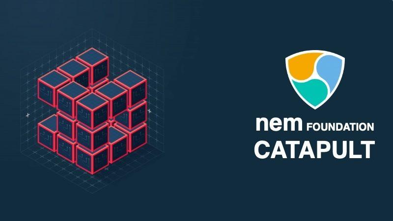 Lanzamos junto a la Fundación NEM el curso oficial en certificación Catapult